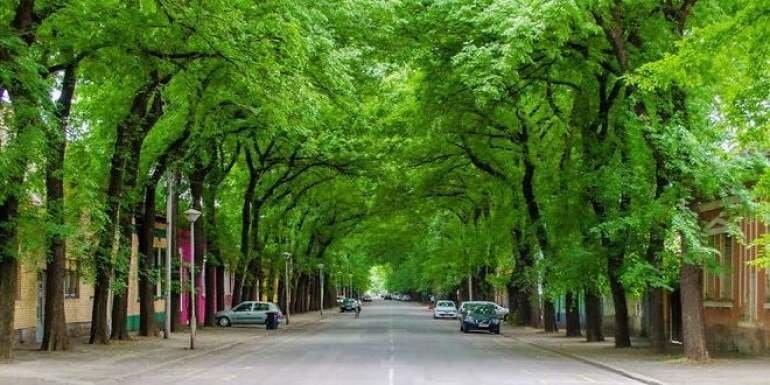 Jedna od 50 najlepših ulica na svetu